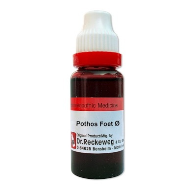 Dr. Reckeweg Pothos Foetidus Homeopathy Mother Tincture Q