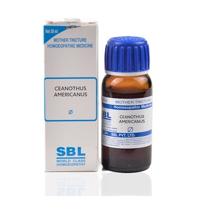 SBL Ceanothus Americanus Homeopathy Mother Tincture Q