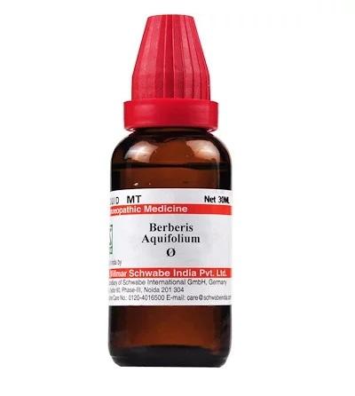 Schwabe Berberis Aquifolium Homeopathy Mother Tincture Q
