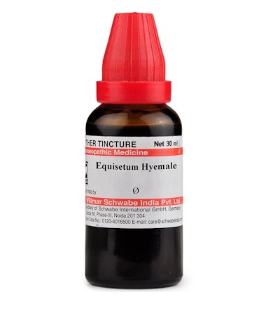 Schwabe Equisetum Hyemale Homeopathy Mother Tincture Q