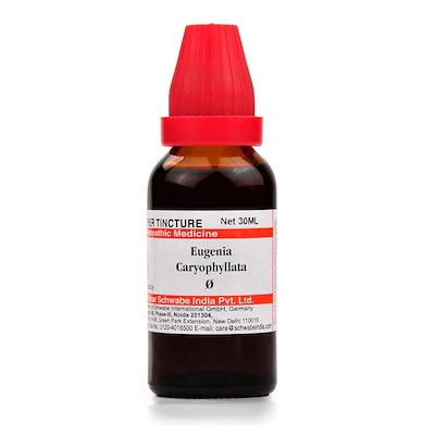 Schwabe Eugenia Caryophyllata Homeopathy Mother Tincture Q