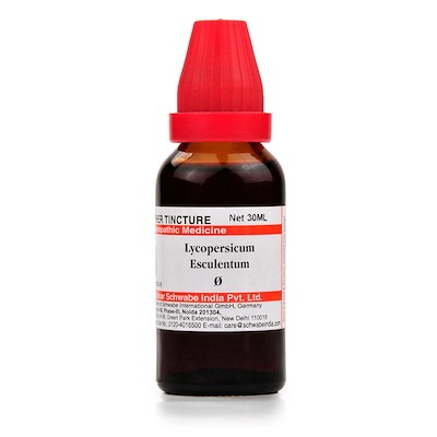 Schwabe Lycopersicum Esculentum Homeopathy Mother Tincture Q