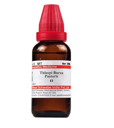 Schwabe Thlaspi Bursa Pastoris Homeopathy Mother Tincture Q