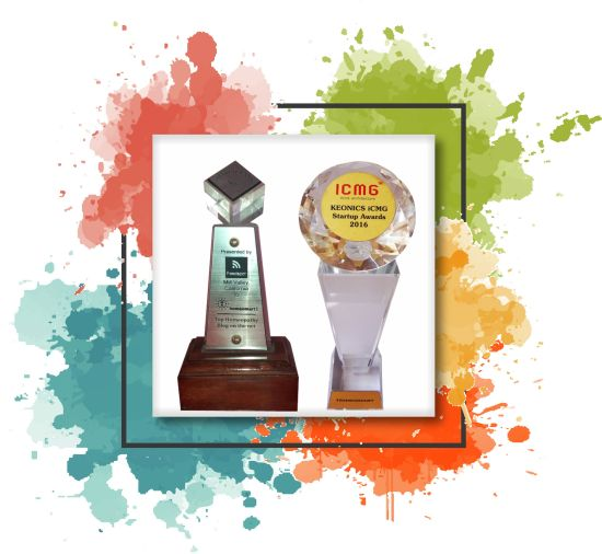 ecommerce awards for a online portal