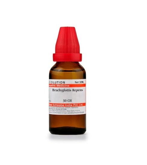 Schwabe Brachyglottis Repens Homeopathy Dilution 6C, 30C, 200C, 1M, 10M