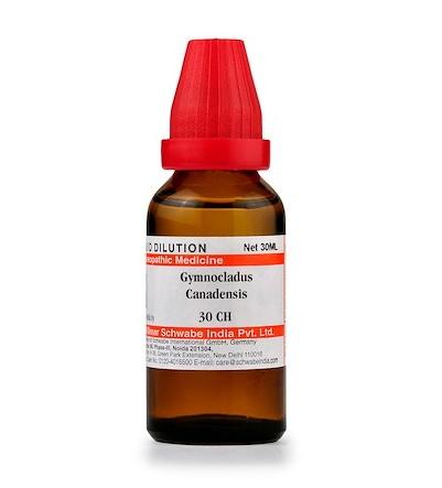 Schwabe Gymnocladus Canadensis Homeopathy Dilution 6C, 30C, 200C, 1M, 10M, CM