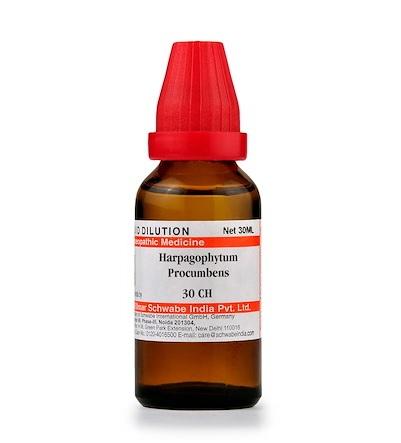 Schwabe Harpagophytum Procumbens Homeopathy Dilution 6C, 30C, 200C, 1M, 10M
