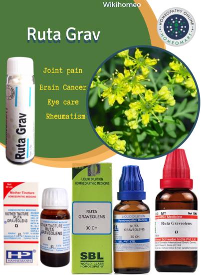 Ruta graveolens homeopathy medicine