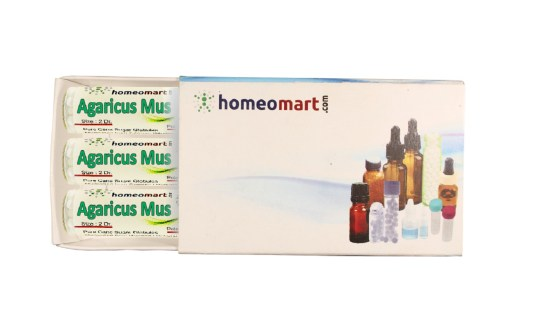 Agaricus Muscarius homeopathy pills