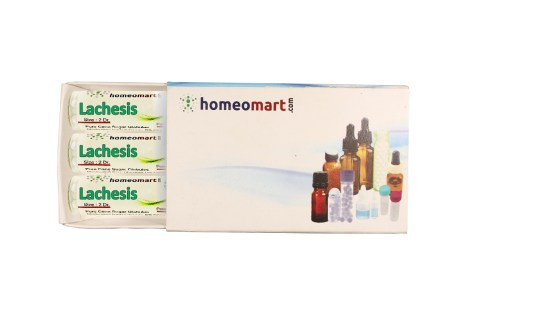 Lachesis homeopathy pills
