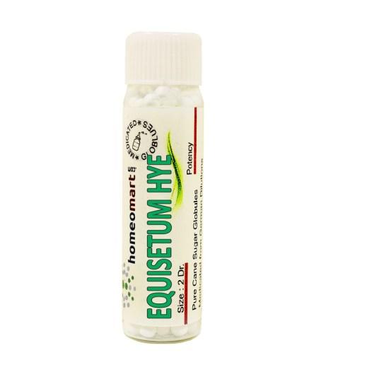 Equisetum Hyemale homeopathy pills
