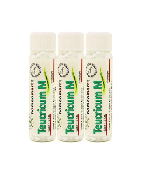 Teucrium Marium homeopathy pills