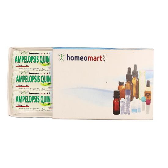 Ampelopsis Quinquefolia Homeopathy 2 Dram Pellets 6C, 30C, 200C, 1M, 10M