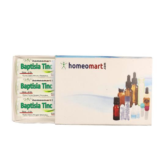 Baptisia Tinctoria Homeopathy 2 Dram Pellets 6C, 30C, 200C, 1M, 10M