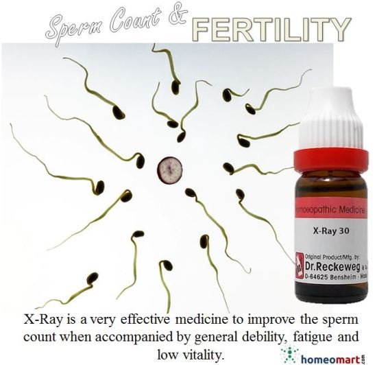 """best medicine to increase sperm count, homeopathic medicine for nil sperm count"""