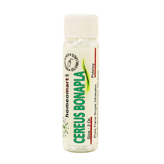 Cereus Bonplandii Homeopathy 2 Dram Pellets 6C, 30C, 200C, 1M, 10M