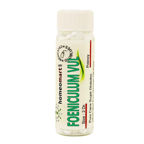 Foeniculum Vulgare Homeopathy 2 Dram Pellets 6C, 30C, 200C, 1M, 10M