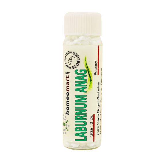 Laburnum Anagyroides Homeopathy 2 Dram Pellets 6C, 30C, 200C, 1M, 10M