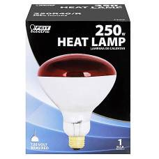 heat lamp bulb for chick brooder