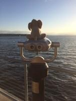 Tantor on Binoculars