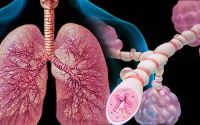 Electro Homeopathic Treatment of Asthma