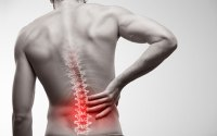 Electro Homeopathic Treatment of back Pain