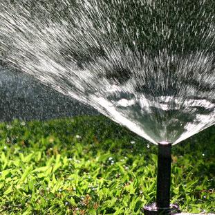 012106_lwn_sprinkler02_dt