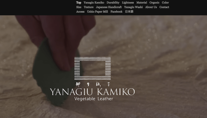Yanagiu Kamiko on Strikingly