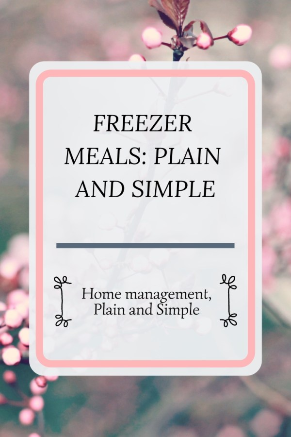 Freezer Meals Plain and Simple. In this post, learn freezer meal tips and hacks for your unique situation!
