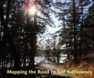 Self-sufficiency - a route to getting there