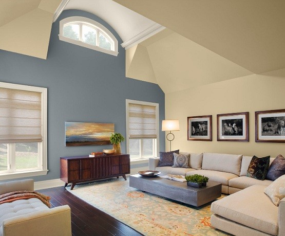 Paint Color Schemes Living Room Ideas Home Interiors