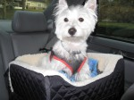 Best Dog Booster Car Seat