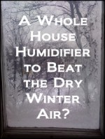 A Whole House Humidifier to Beat the Dry Winter Air?