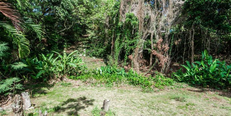 1109 Uluopihi Loop Kailua HI-large-013-21-13-1499x1000-72dpi
