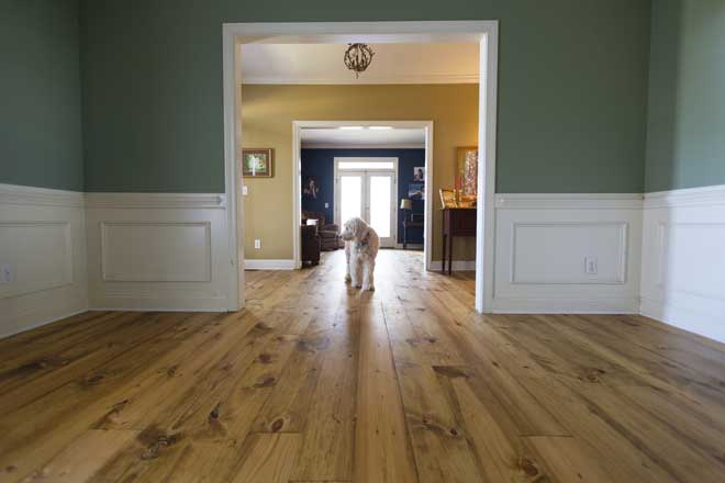 The Pros And Cons Of Pine Flooring Home Reference
