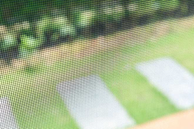 Inside View of Window Screen