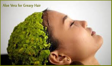 Aloe Vera to Fix Greasy Hair