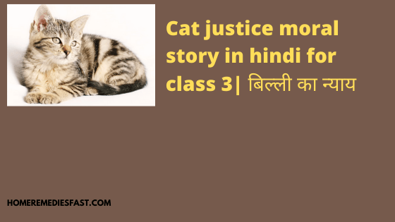 cat justice moral story in hindi for class 3