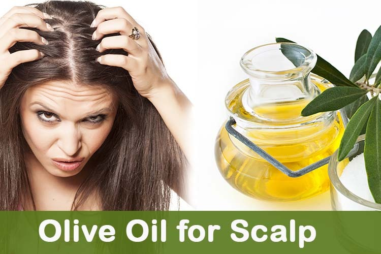 Olive Oil For Scalp Olive Oil Treatment On Dry Itchy