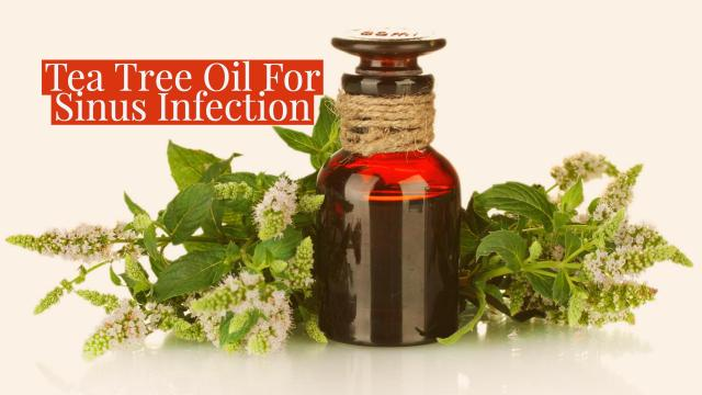 Image result for sinus oil BSR