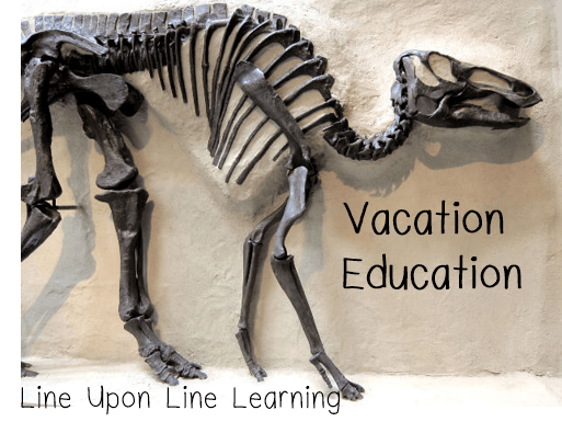vacation education