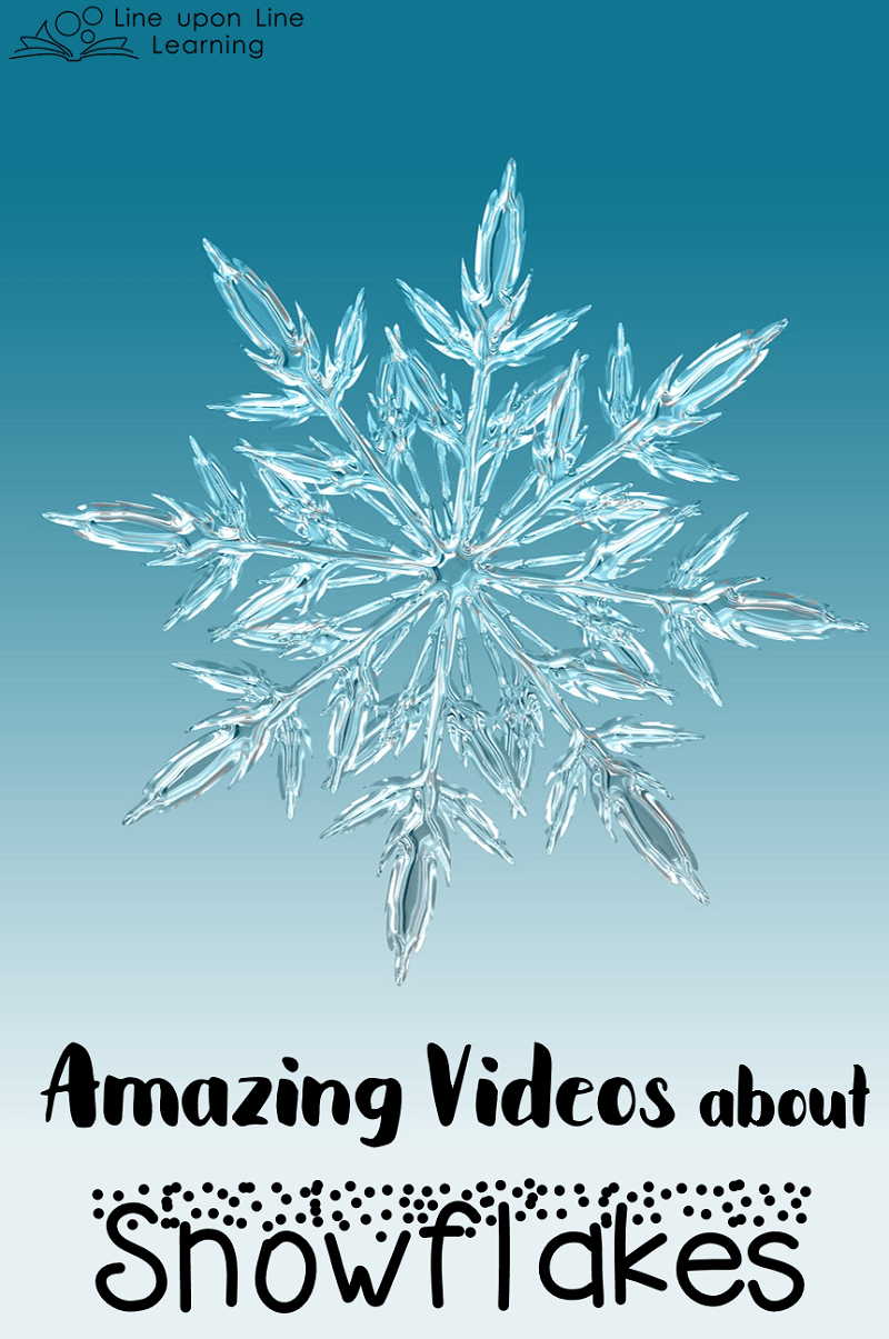 Snowflakes are amazing! These cool snowflake videos get up close and personal with the details behind these beautiful creations of nature.