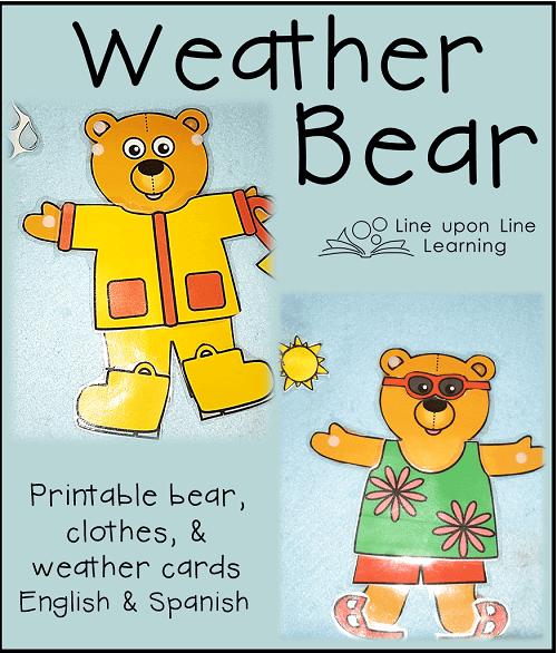 weather bear