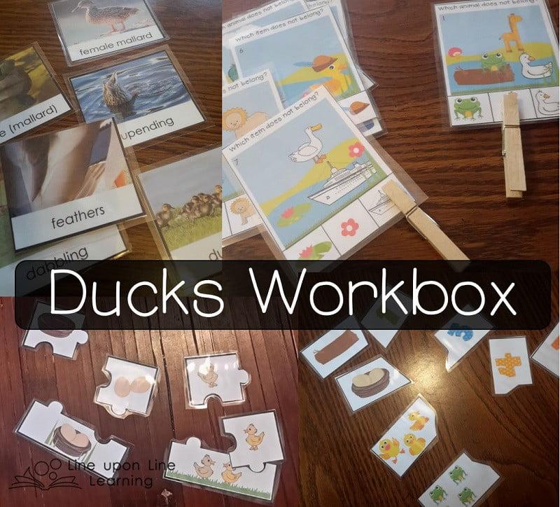 201504ducks workbox