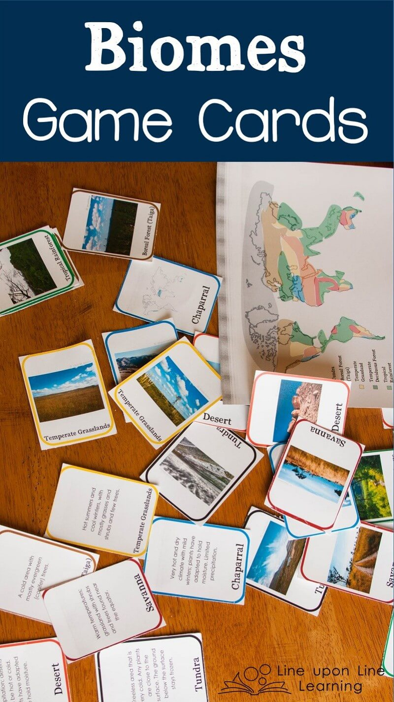These biomes game cards helped us review the eight land-based biomes. The biomes game cards have descriptions, maps, and real photographs.
