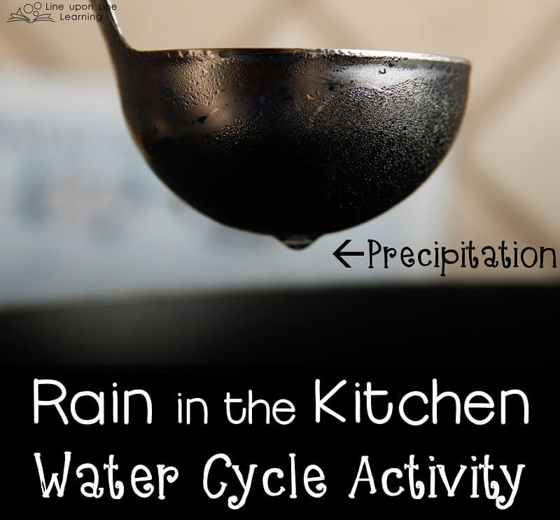 Those condensed water droplets are about to fall...precipitation in our kitchen!