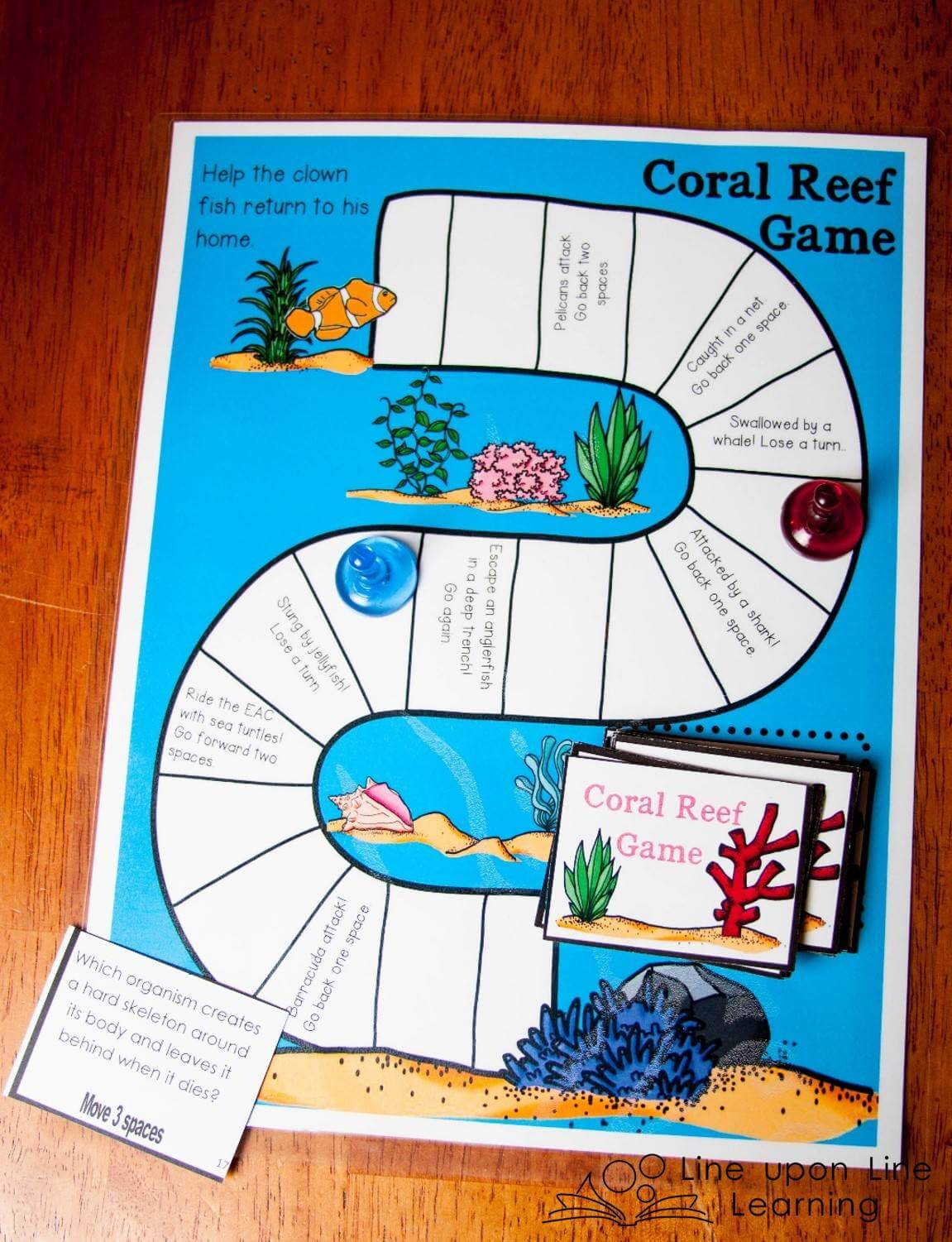 The coral reefs board game tests what we learned in a fun game!