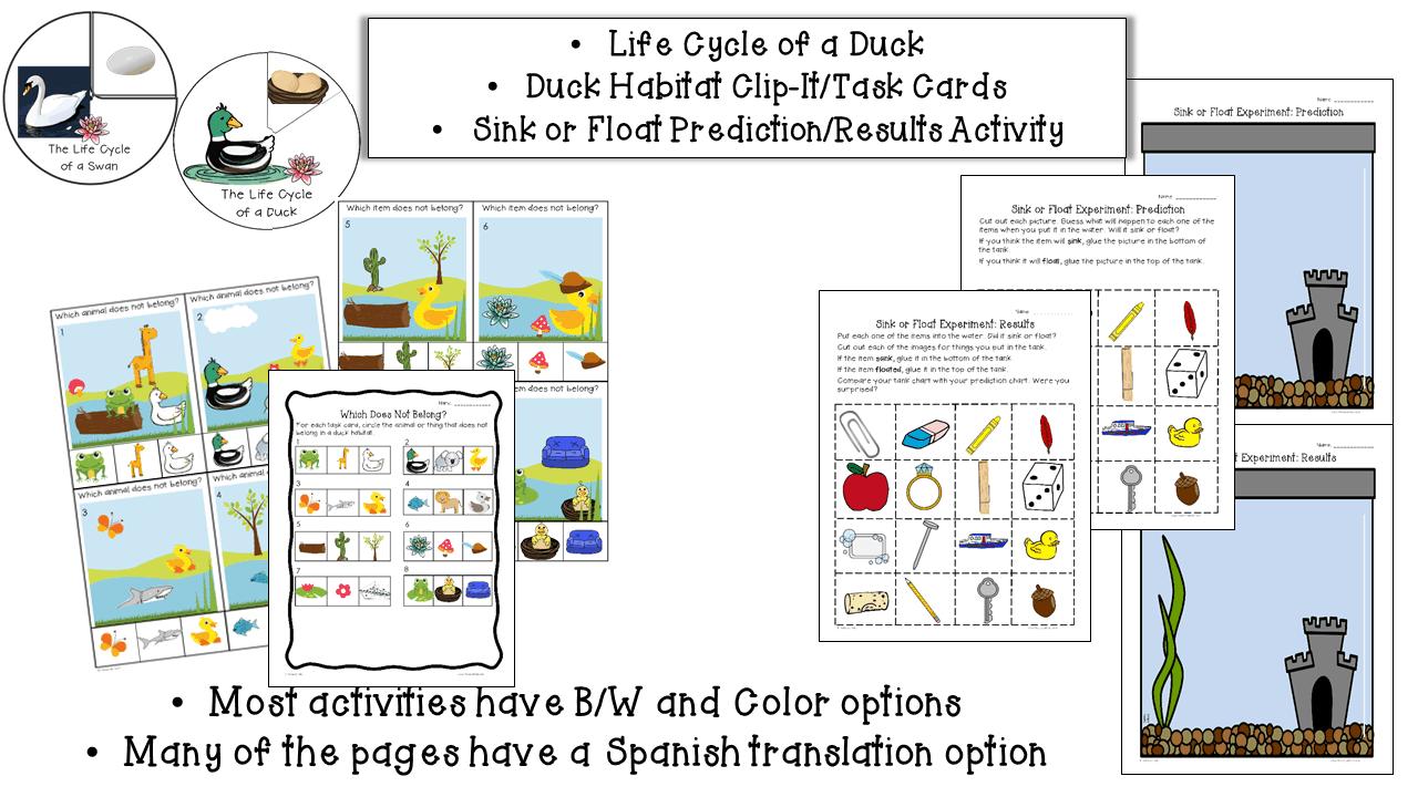 Ducks Lessons Slide4