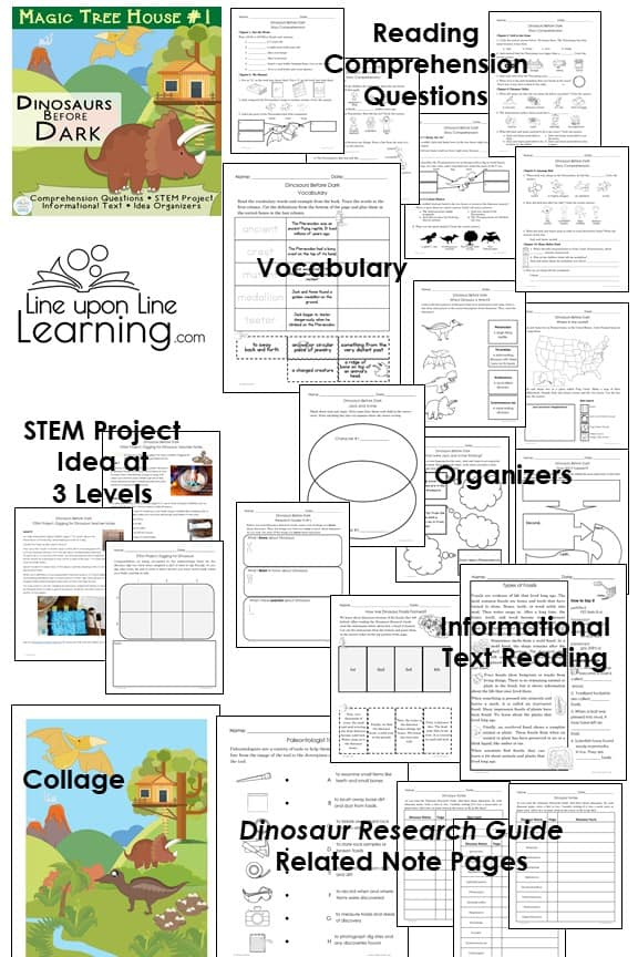 Review what you read in Dinosaurs Before Dark with these worksheets, informational texts, and activities.