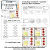 pizza fractions worksheets task cards DEMO